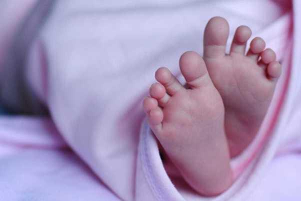 Recém-nascida é picada 5 vezes por escorpião no cordão umbilical
