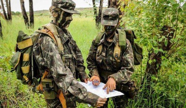 Bolsonaro deve enviar Forças Armadas para combater queimadas na Amazônia